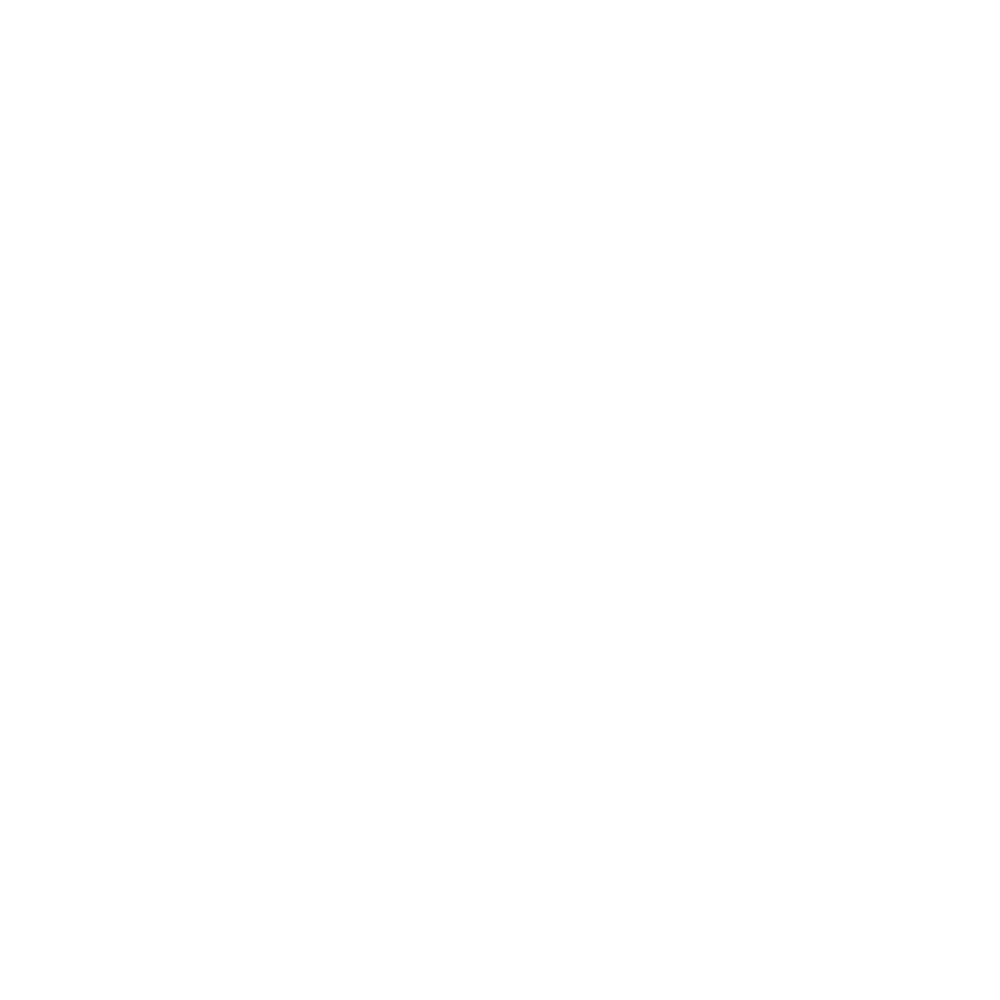 VIDA Review logo