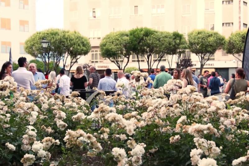 La terraza del verano en Salamanca Vida&Comida small