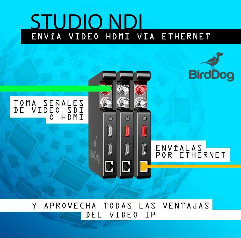 birdog-video-ip-conversion-sdi-hdmi-ip-videodepot