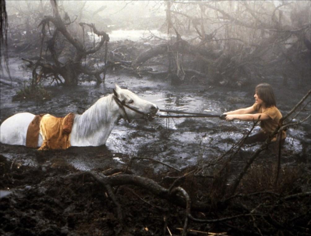 L'histoire sans fin – Wolfgang Petersen