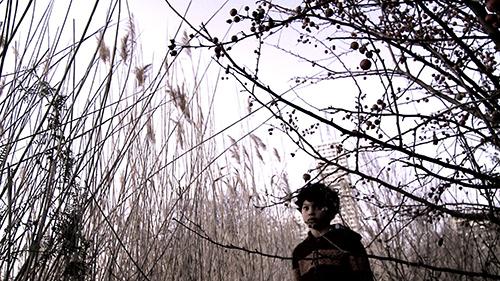 Vies parallèles – Sol Suffern-Quirno & Rudolf Di Stefano