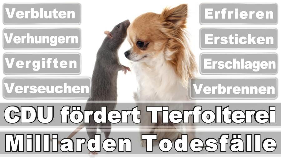 Hans Kr.Goslar Düsseldorf Eilers B. Wahlvorschläge Für Die Wahl In Den Wahlbezirken