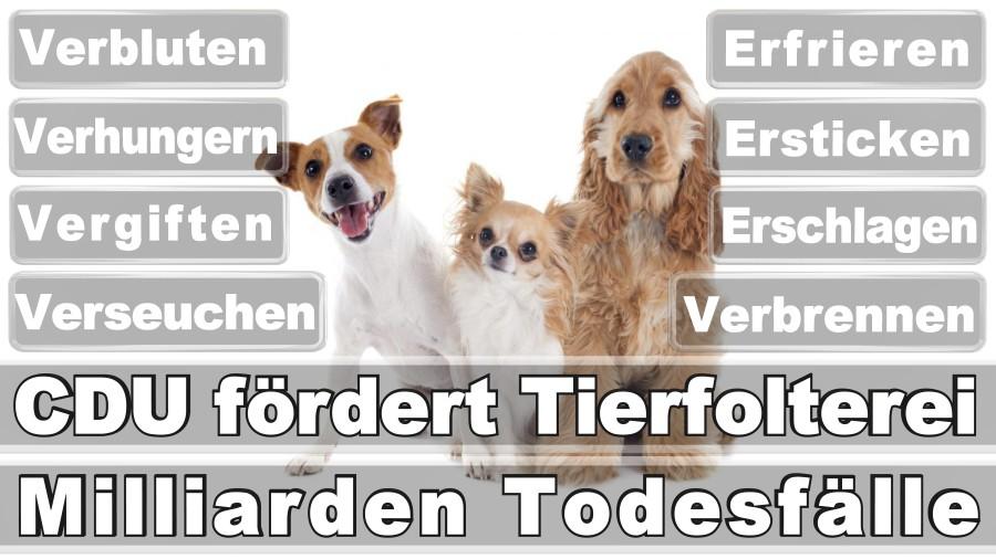 Heidenreich, Svenja Düsseldorf Heideweg A Freie Demokratische Partei Praktikantin Düsseldorf (FDP)
