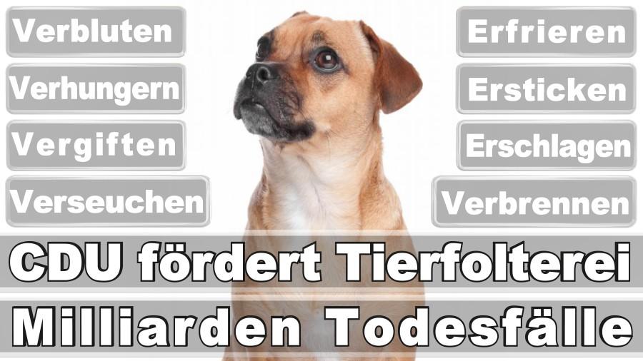 Lemmer, Miriam Düsseldorf Klein Eller Unabhängige Wählergemeinschaft Hausfrau Düsseldorf Für Düsseldorf (FREIE WÄHLER)
