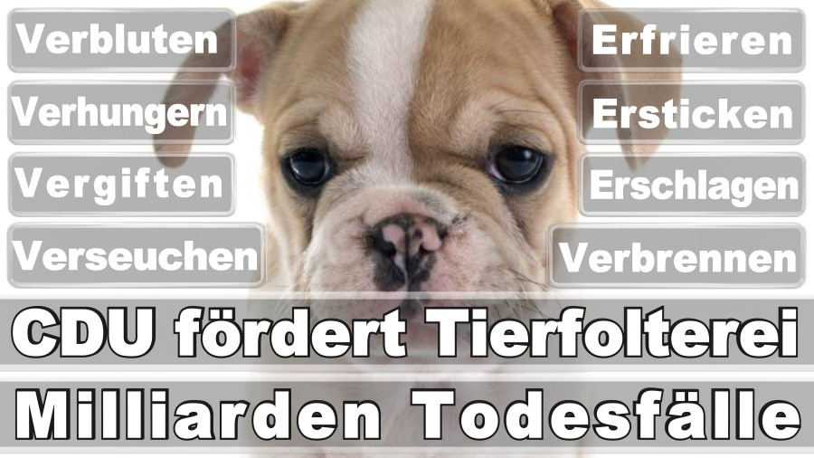 Obendorf, Moira Zahnmedizinische Fachangestellte Düsseldorf Becherstraße Düsseldorf