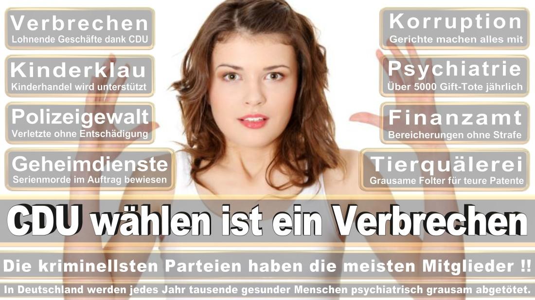 Willms Heyng, Sönke Delbrück Von Gahlen Straße Freie Demokratische Partei PR Berater Düsseldorf (FDP)