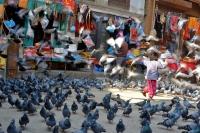 Videonauts Nepal Kathmandu backpacking