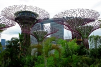 Videonauts Singapur Gardens by the bay backpacking