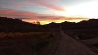 November_Camino13