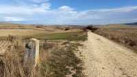 November_Camino19