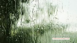 Rain On The Window Motion Loop