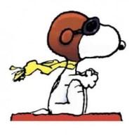 Snoopy der wundervolle Hund der Peanuts ist bereit für den Kampf. (Bild: Charles M. Schulz)