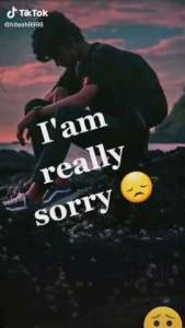 Read more about the article Sorry whatsapp status video download