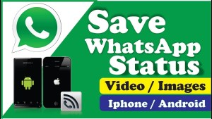 Save Whatsapp Status