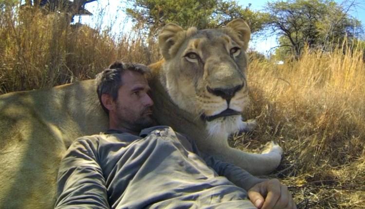 Amazing Lion Whisperer
