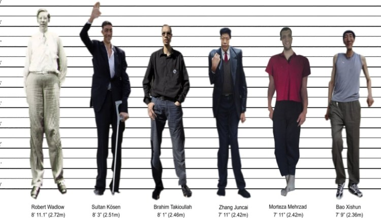 Tallest Man of the World