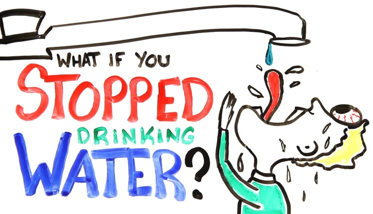 What Would Happen If You Stopped Drinking Water