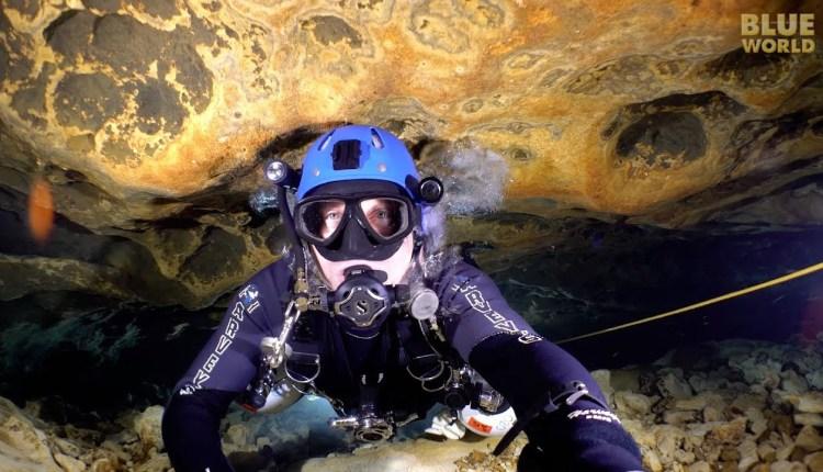 Experience Cave Diving In Ichetucknee Springs