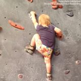 19 Months Old Toddles Does Rock Climbing