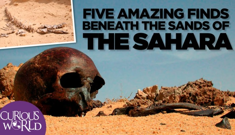 5 Unbelievable Things Found In Sahara Desert