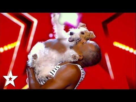 This German Dog Has Got Talent