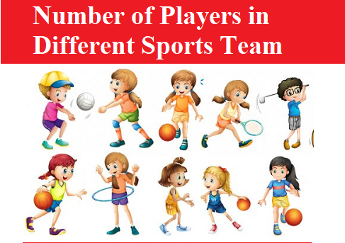 Number of Players in Different Sports Team
