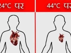 human body temperature