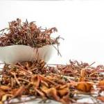 TOP 7 des herbes ayurvédiques pour prendre du poids naturellement
