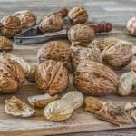 Une poignée de noix chaque jour vous aidera à perdre du poids