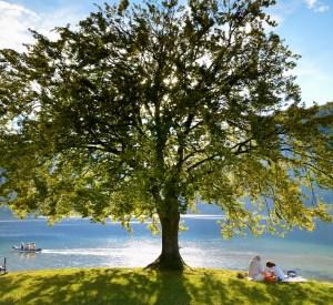 Szlovénia Bohinj-tó