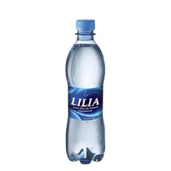 0077542 acqua lilia naturale 50cl bt confezione da 24 bottiglie 550 1