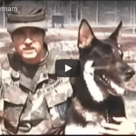 War Dogs Of Vietnam