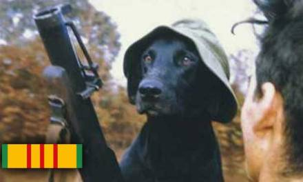 The Dogs of the Vietnam War
