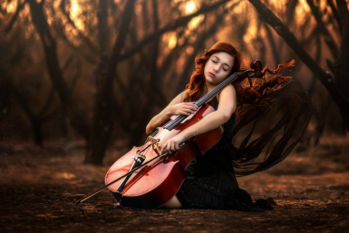 Last Song by EdiV_Photography - Orange Tones Photo Contest