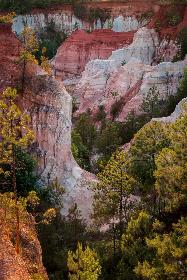 Canyon Colors by chrisantoniniphotography - Celebrating Nature Photo Contest Vol 5