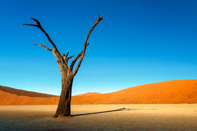 41+ Insanely Gorgeous Simple Landscape Photos Blog ... on Basic Landscaping  id=40040