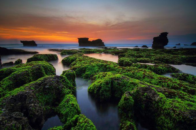 greens door deguslemon - Unieke locaties Fotowedstrijd