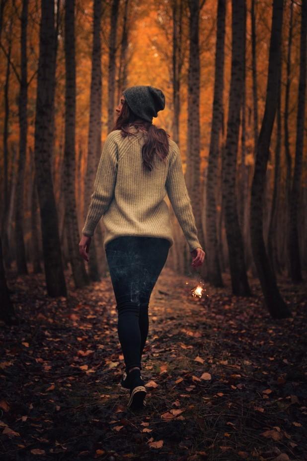 Let's take a walk by DavidPriymak - Orange Tones Photo Contest