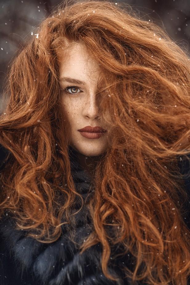 Lion heart by NinaMasic - Orange Tones Photo Contest