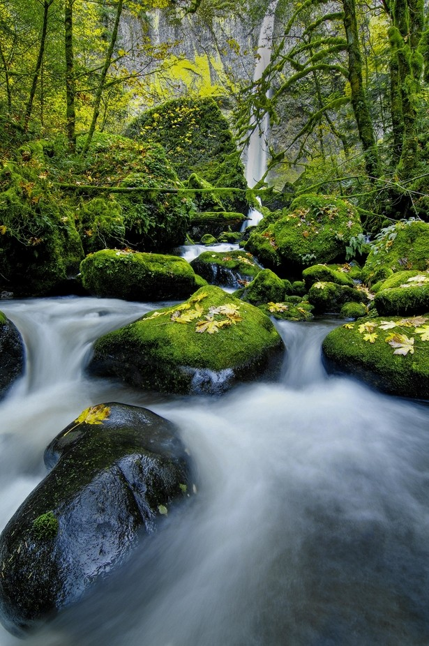Rocky Route by garyalankophotography - Celebrating Nature Photo Contest Vol 5