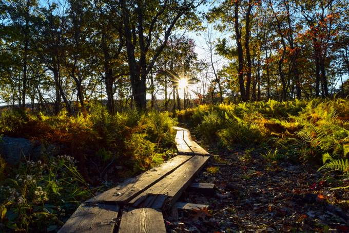 Weekend in the Woods by boffoliphotography - Unieke locaties fotocompetitie