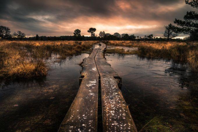 Buurserzand by martijnvansteenbergen - The Wonders of the World Photo Contest