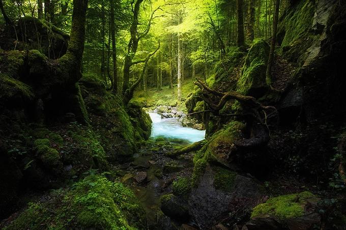 E C R I N by EmmanuelVerzura - Celebrating Nature Photo Contest Vol 5