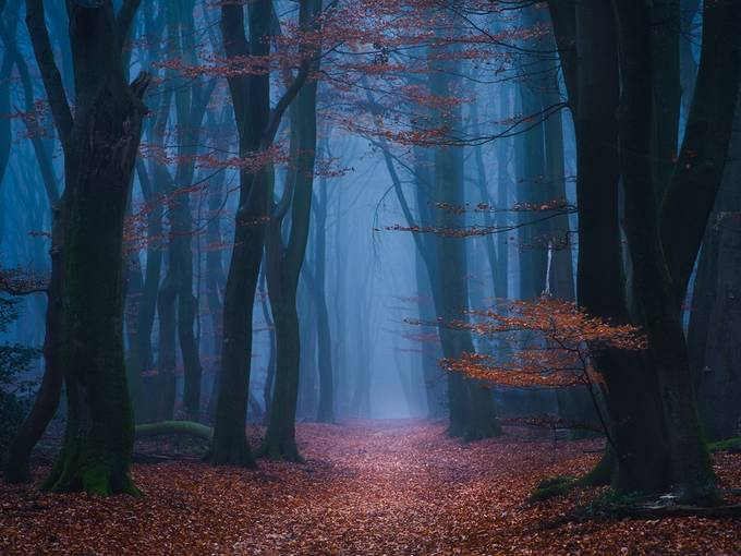 In the mist by gkossieris - Image Of The Month Photo Contest Vol 43