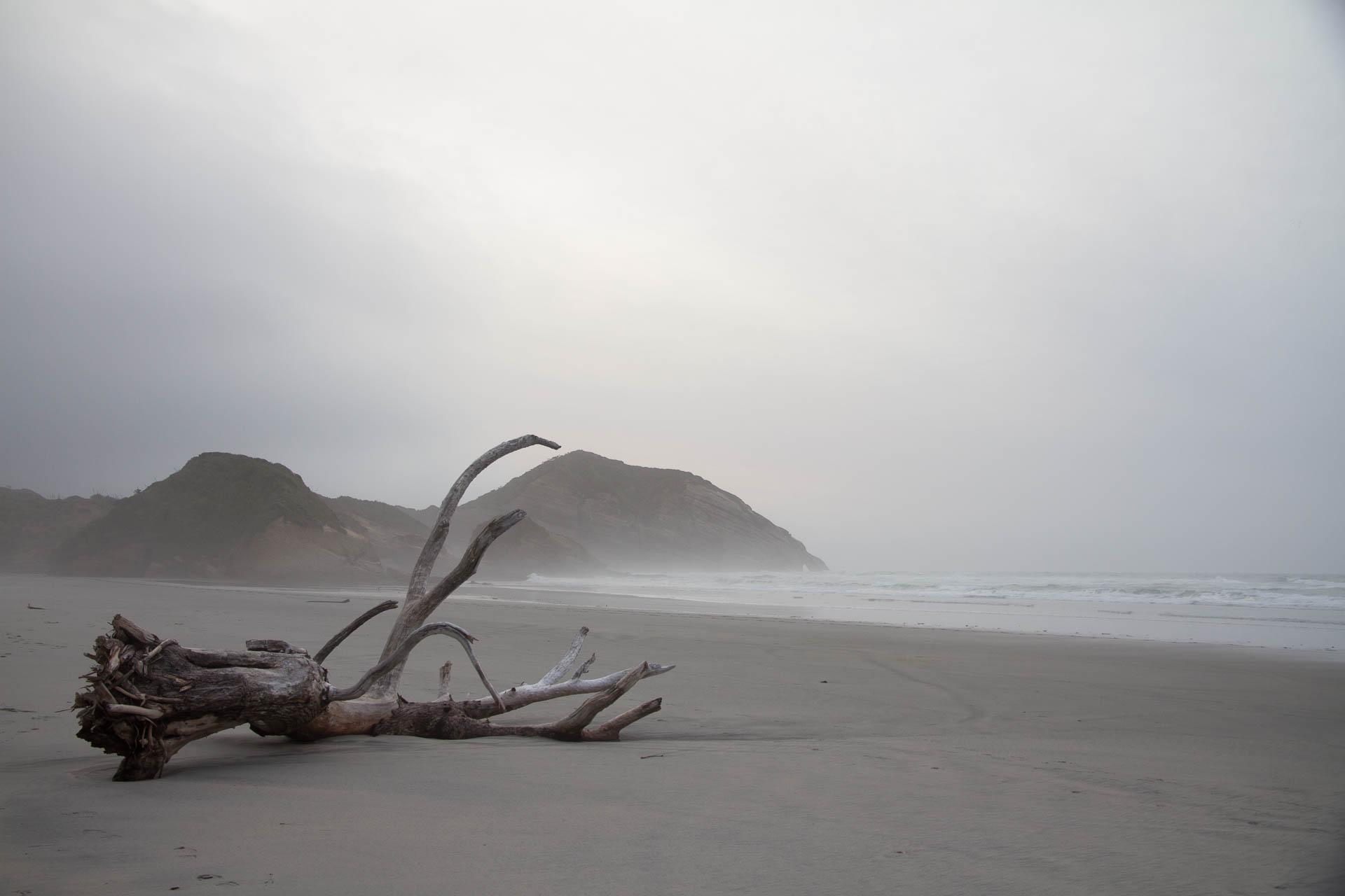 Wharaiki Beach