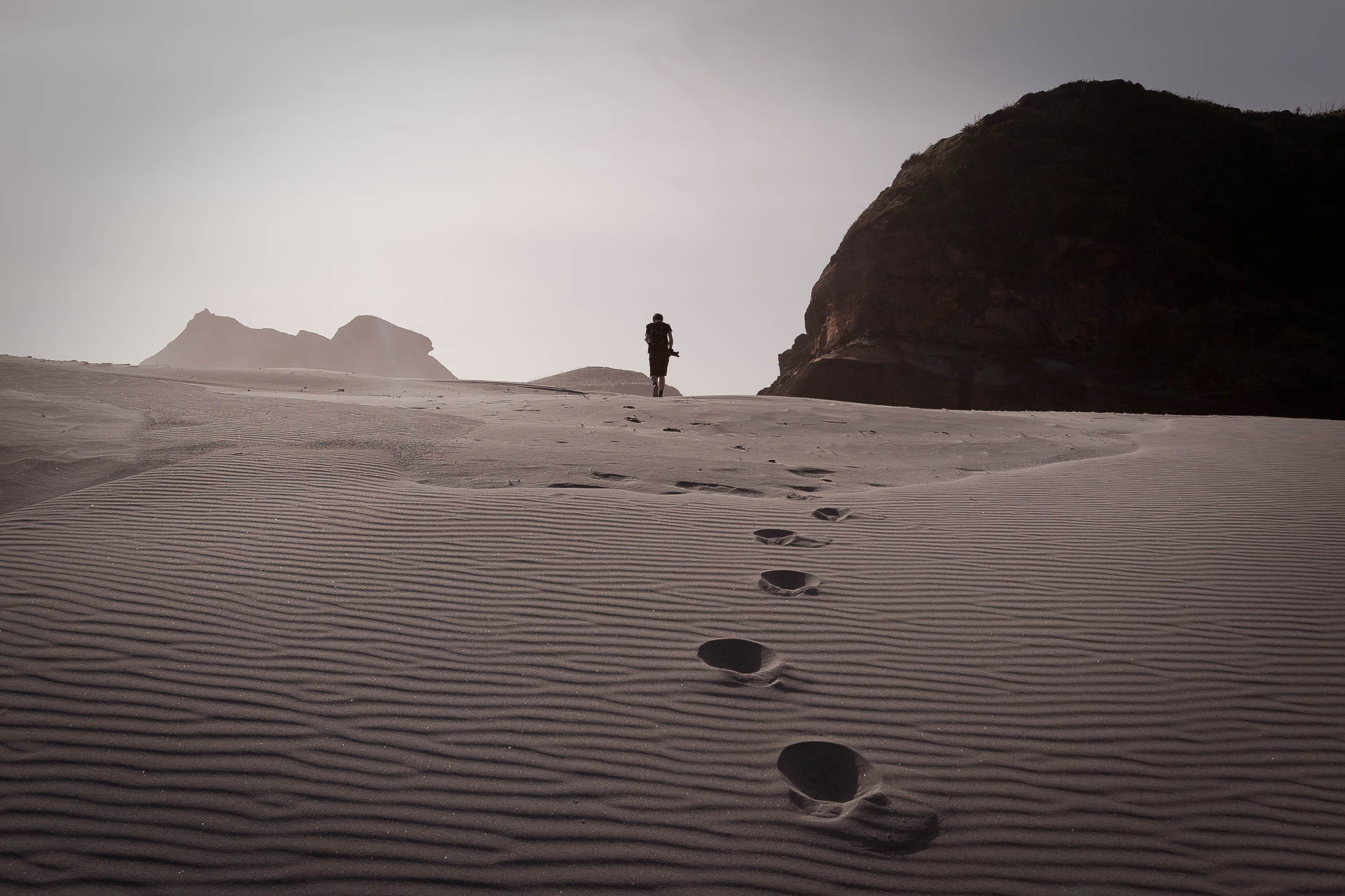 Wharariki Beach - Dunes
