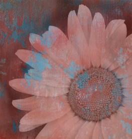 Jillian Koernich_Paint Distressed Daisy