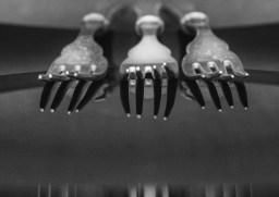 Jillian Koernich_Antique Fork Reflections