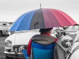 Summer car show