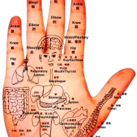 Qi Circulation and Acupoints in Chinese Medicine